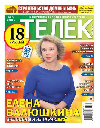№5 (261) Елена Валюшкина