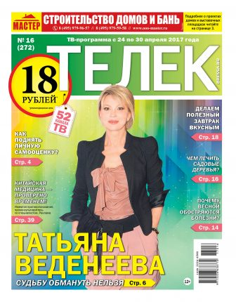 №16 (272) Татьяна Веденеева