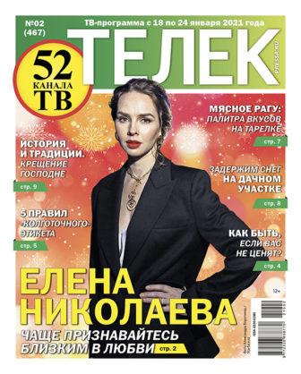 №02 (467) Елена Николаева